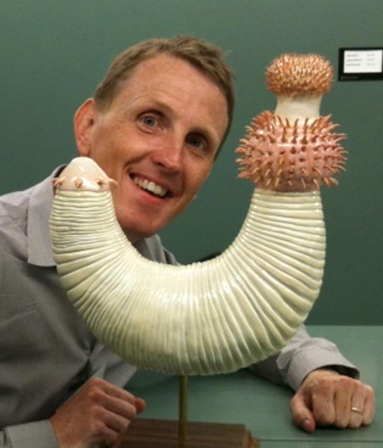 Professor Philip Donoghue