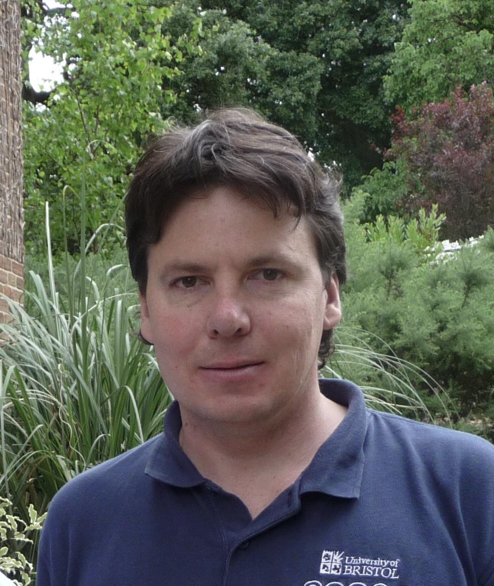 Professor Stephen Hallett