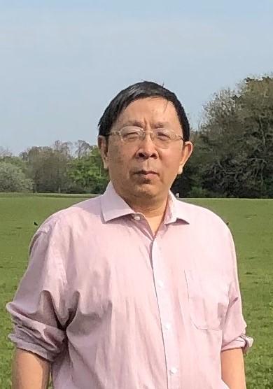Professor Dawei Han